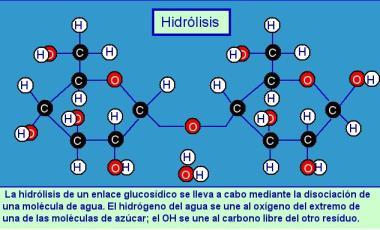 Aplikasi Hidrolisis dalam Kehidupan Sehari-hari (Corak-Corek)